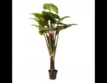 Buy Kunstlill KARE DESIGN Rainforest Green 60720 Elkor