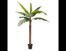 Buy Kunstlill KARE DESIGN Plant Banana Tree 60722 Elkor
