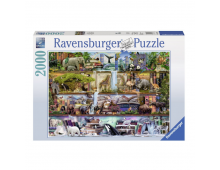 Buy Pusle RAVENSBURGER Great Animal World R16652 Elkor